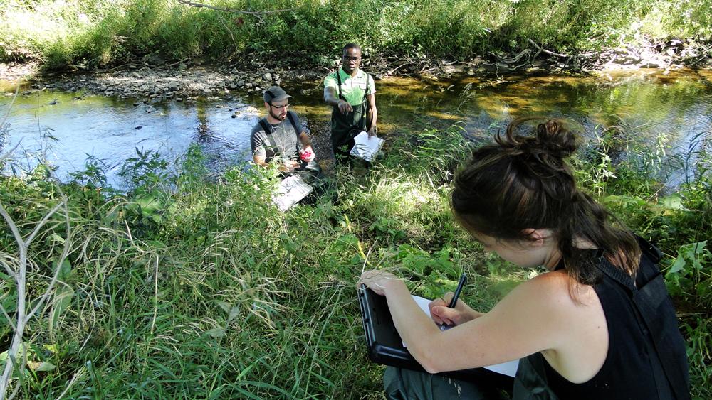 Caractérisation des berges d'un cours d'eau et vérification de la ligne des eaux hautes